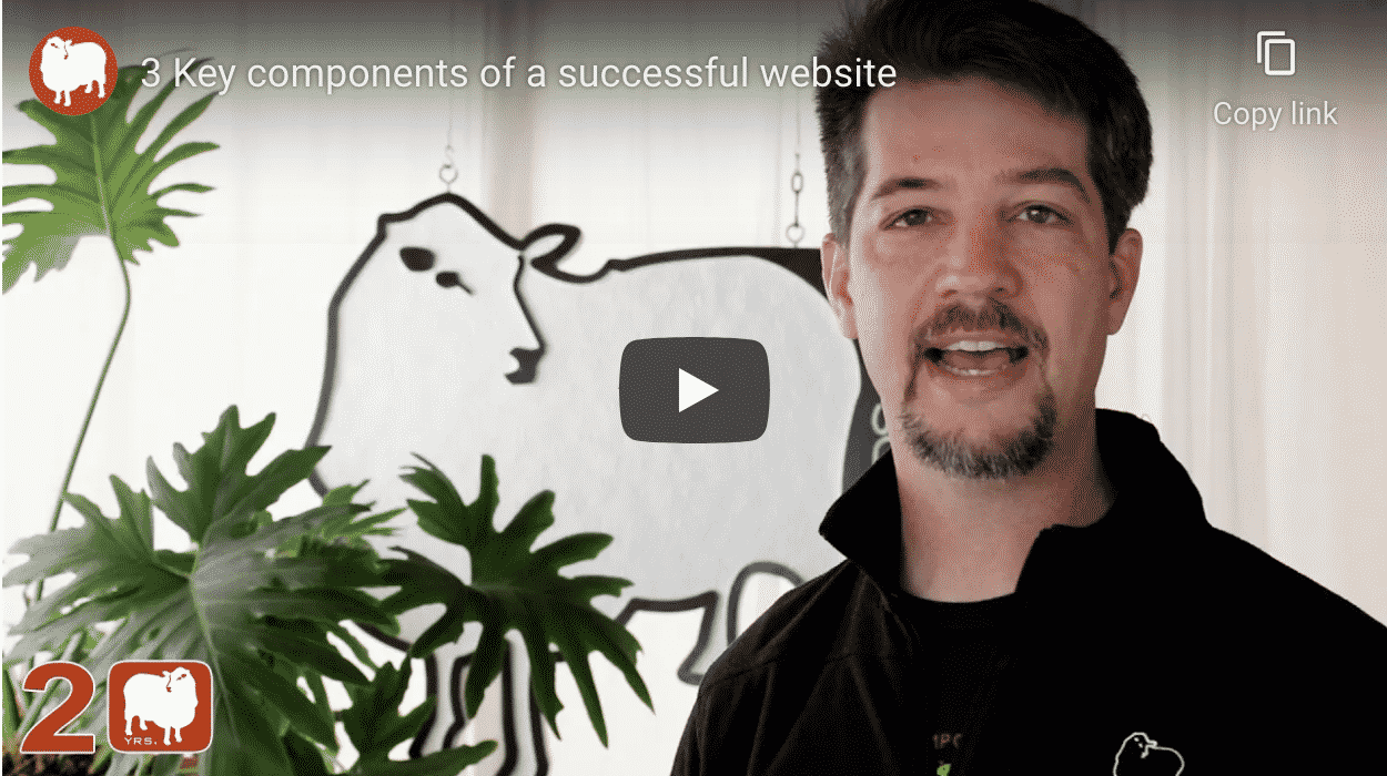 build a successful website