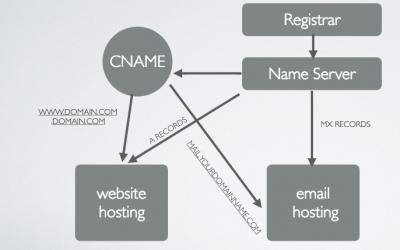 Preparing for WordPress Management Services